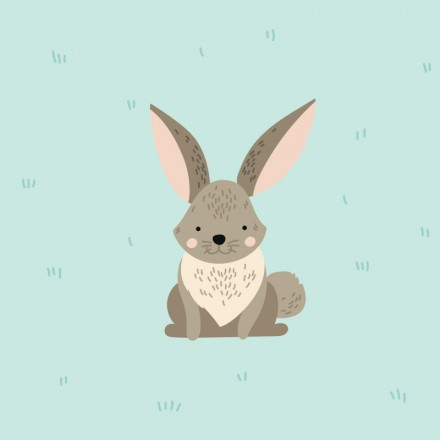 Zozo Rabbit